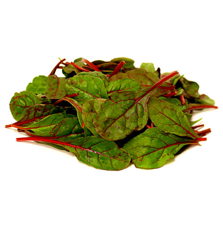 baby-red-chard