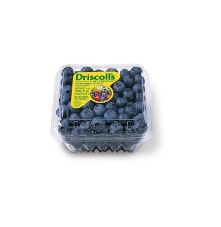 BLUE BERRY DRISCOLL