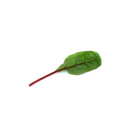 chard_leaf