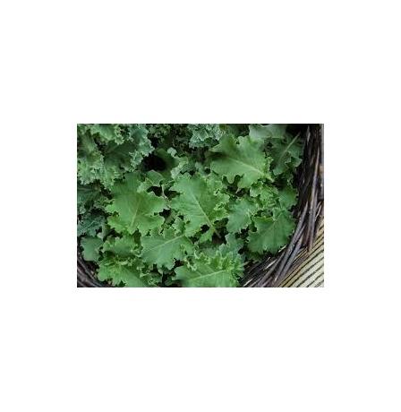 green-kale