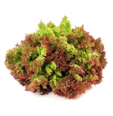 multi-leaf