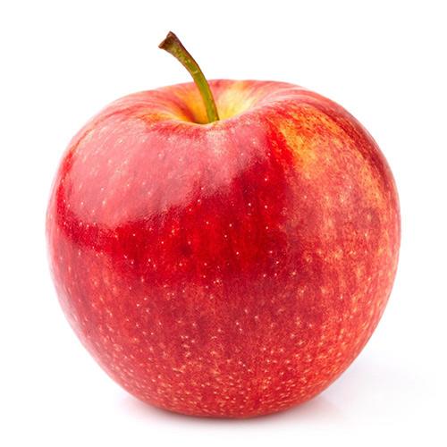 Apple Gala Kg