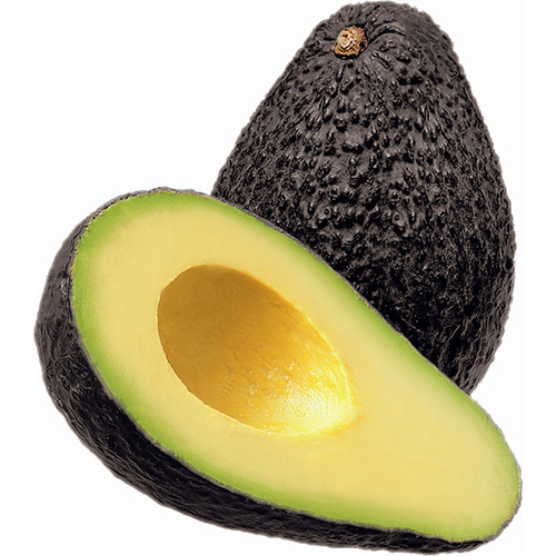 Avocado Hass Extra Large Kg