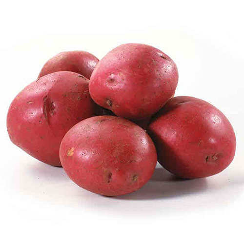 Baby Potato Red Usa – Kg