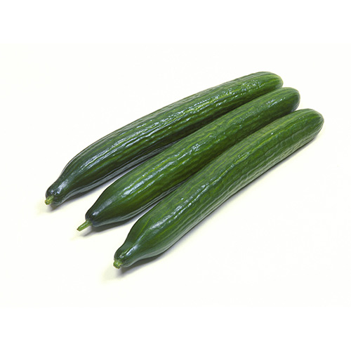 Cucumber Holland – Kg