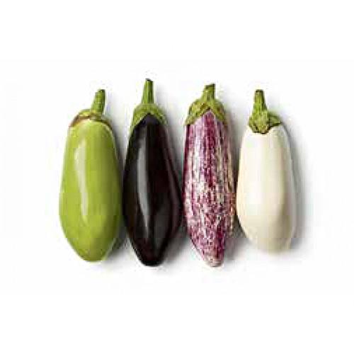 Eggplant Longer Italy – Kg