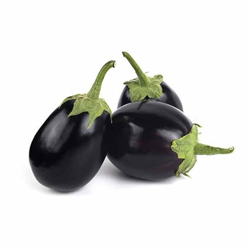 Eggplant Saudi Baby – Kg