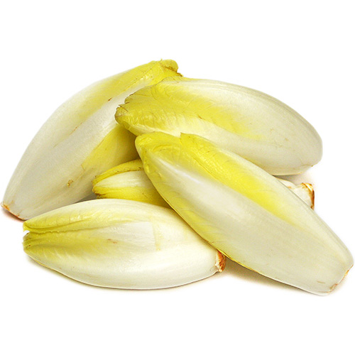 Endive Yellow – Pkt 400 Gram