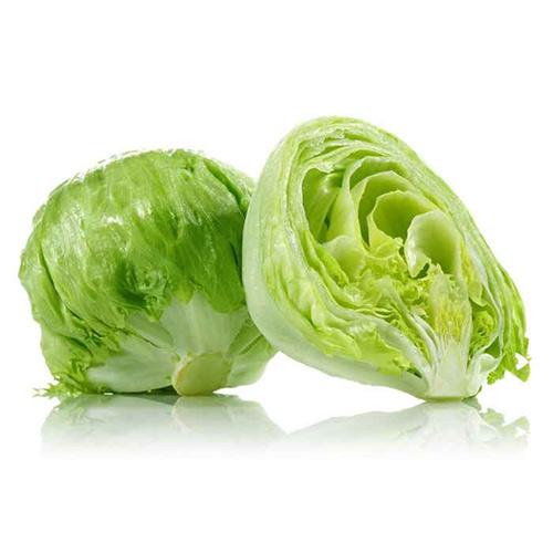 Iceberg Lettuce Imported – Kg