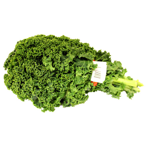 Kale Curly Holland – Kg