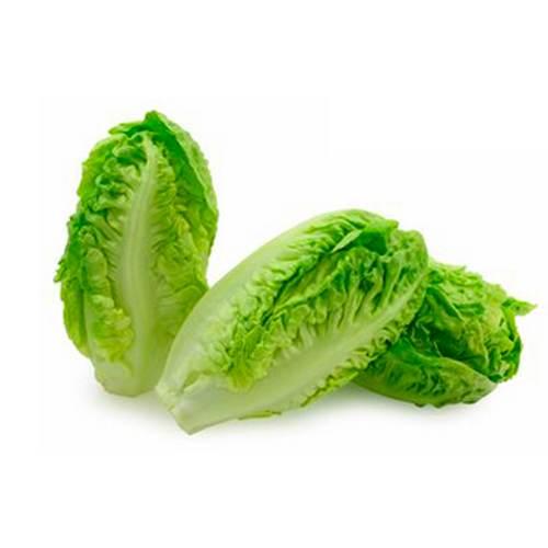 Lettuce Baby Gem – Pkt 500 Grams