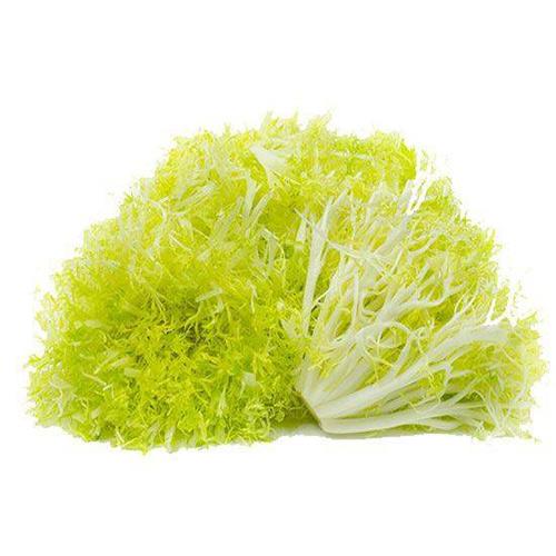 Lettuce Frisse – Kg
