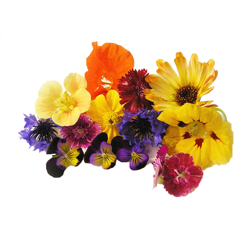 Mixed Edible Flower