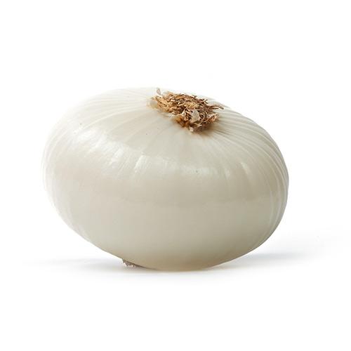 Onion White – Kg