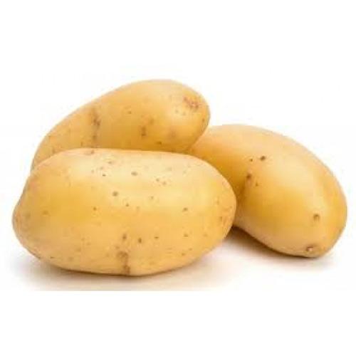 بطاطس – كيلو