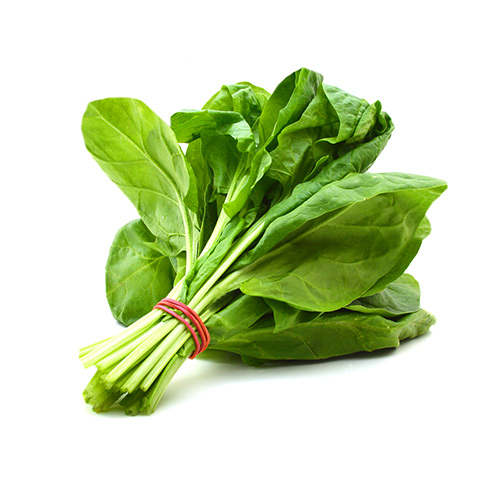 Spinach – Bunch