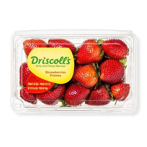 فراولة أمريكى 454 جرام – باكت