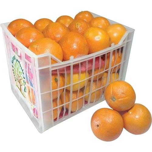 برتقال طازج للأكل